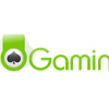 Ho Gaming signs partnership with Mahjong Logic