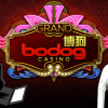 Celebrate the New Year with a new Bodog Asia Casino Career