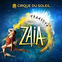 cirque-du-soleil-venetian-macau
