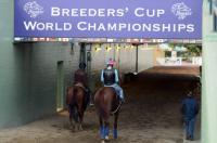 breeders cup