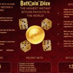Two Major Gaming Players Split the World's Bitcoin Transaction Pie