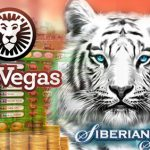 LeoVegas £570K Online Slots Winner Wants to Set Up His Own Betting Business