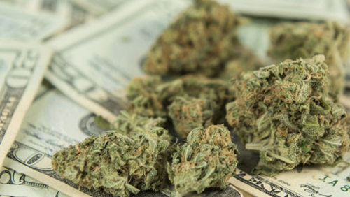 Marijuana and Gambling, Essential Ingredients for Competitive Capital Markets
