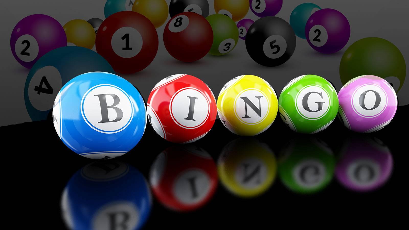 The Bingo Project