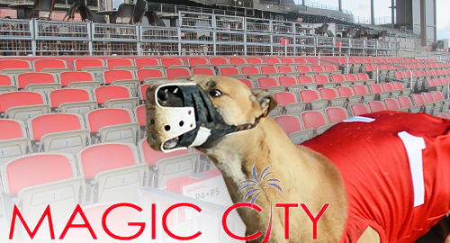 florida-magic-city-dog-track-decouple