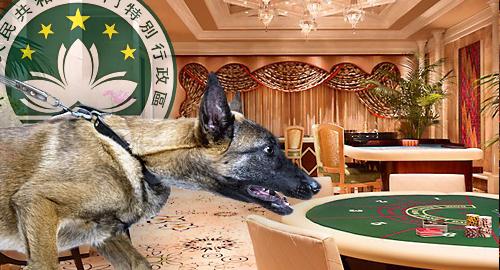 macau-tight-leash-casino-junket-operators