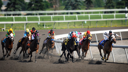 Struggling New Jersey horse tracks to get a piece of Internet gambling pie