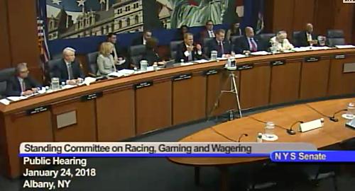 new-york-senate-sports-betting-hearing