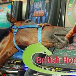 UK racing urges gov't to rethink drastic FOBT stake cut