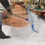 Atlantic City casinos shovelling snow, not money, in January