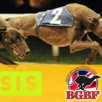 SIS provides funding to the British Greyhound Breeders Forum