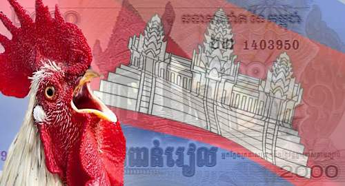 cambodia-casino-cockfighting-raid