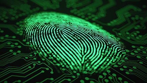 Cashless biometric betting machines hit the market
