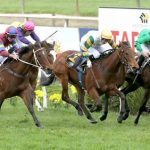 New Zealand's smaller racing clubs take on the giants